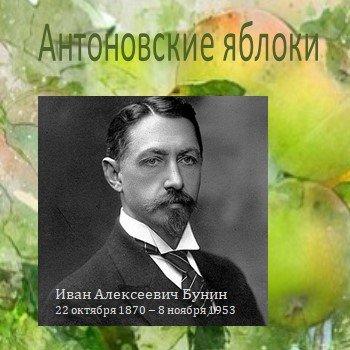 Антоновские яблоки Бунина