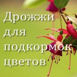 Дрожжи для подкормок цветов